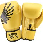 "Fairtex Limited Edition ""Falcon"" Boxing Gloves - 14oz"