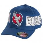 Hayabusa HAYA-BUSA Hat - Blue