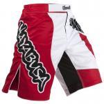 Hayabusa Chikara Performance Shorts - Red