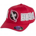 Hayabusa HAYA-BUSA Hat - Red